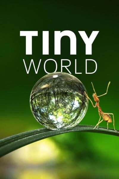 tiny-world-season-1-2020-ซับไทย